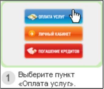 http://www.kurs-pc-dvd.ru/img/kiwi1.JPG