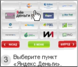 http://www.kurs-pc-dvd.ru/img/kiwi3.JPG