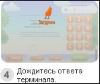 http://www.kurs-pc-dvd.ru/img/kiwi4.JPG