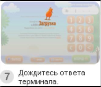 http://www.kurs-pc-dvd.ru/img/kiwi7.JPG